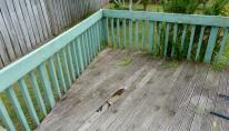 HCS damaged deck