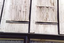 plywood delamination