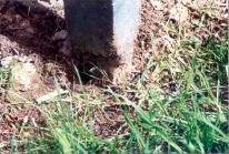 153 rot at base of post