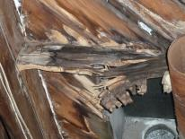 damaged rafters