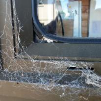 HCS windows loose glazing seal